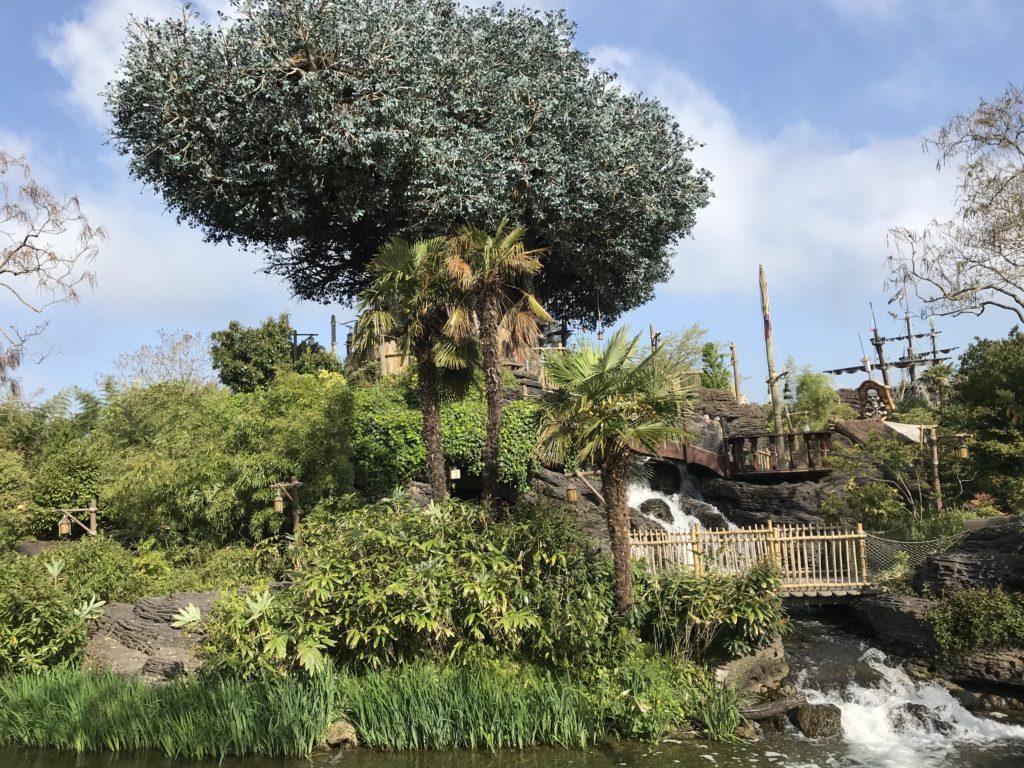Le disneydendron accueillant la caande des Robinson à Adventureland
